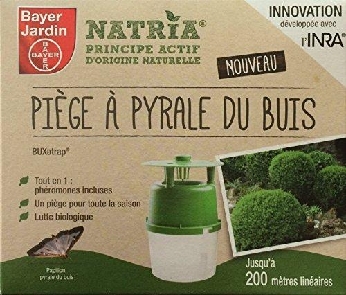 Bayer : Piège à Pyrale du Buis